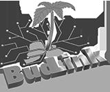 Budlink-logo_1