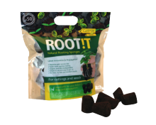 Rooting sponges