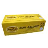Powerplant coil